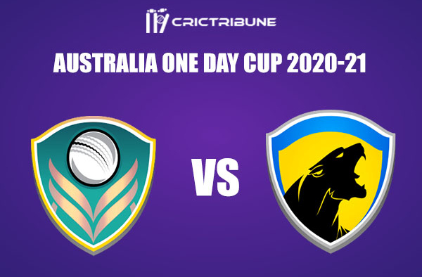 VCT vs TAS Live Score, 5th, Match, Australia One Day Cup 2021, VCT vs TAS Live Score Updates 1